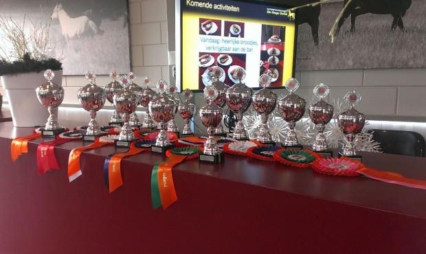 Regiokampioenschap Zuid Holland een succes